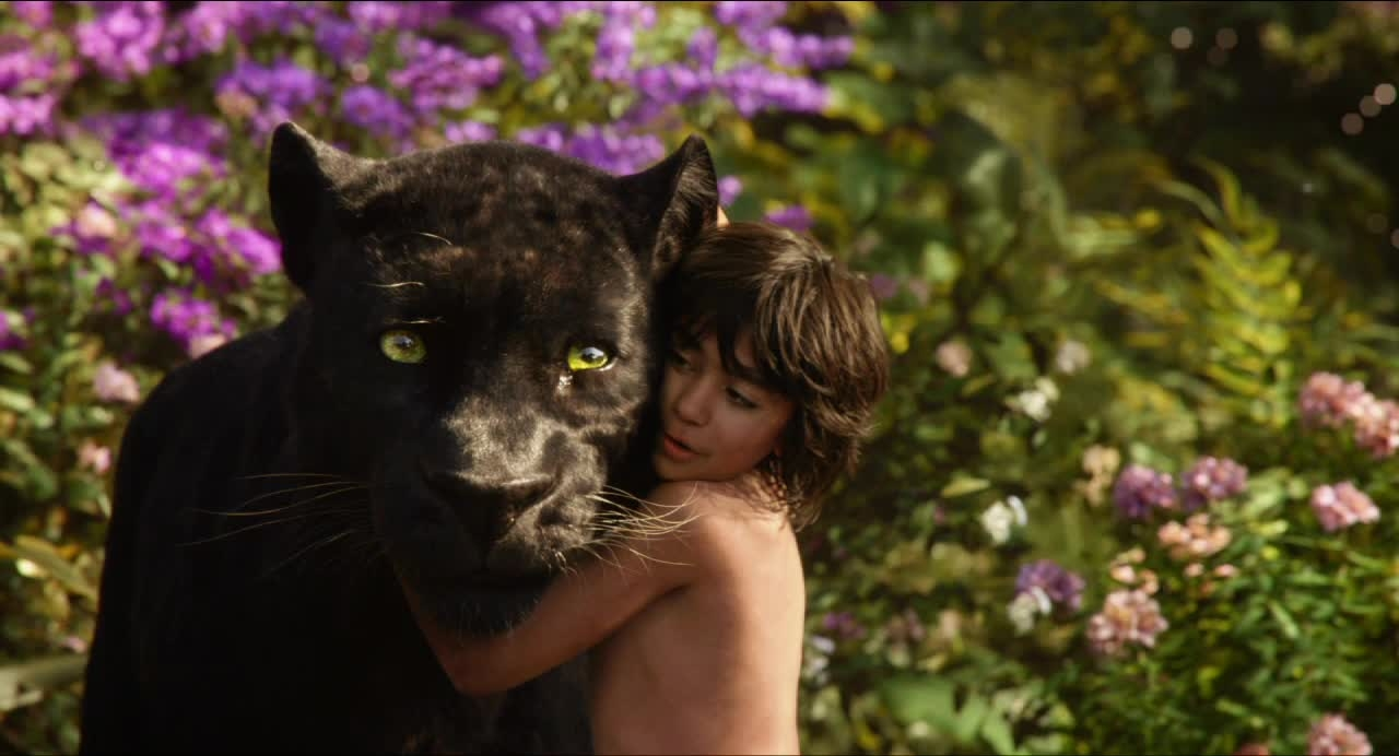 Jungle Book Bagheera
