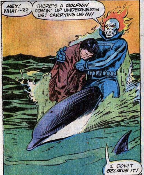 DolphinTag